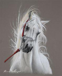 Buste pur sang arabe Pur Sang, Vintage Pocket Watch, Arabian Horses, Equine Art, Pastel Art, Horse Art, Drawing Ideas, Mammals, Equestrian