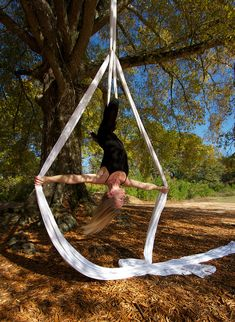 Silks - inspiring!  Beauty and fun and feats of strength and dexterity!