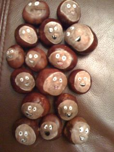 Conker folk!                                                                                                                                                                                 More