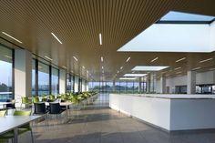 Roche Canteen,Courtesy of EXH Design