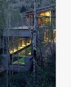 Love the cantilevered pool and idea of swimming amongst the trees while it is snowing outside.