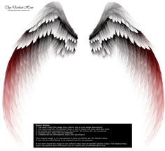 Arch Angel Wings - Red Tinge by Thy-Darkest-Hour on DeviantArt