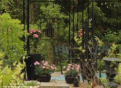 Shady garden pavillon Romppala - Lindan pihalla: Kevätkatsaus