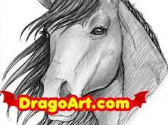 horses drawings step by step - Google Search