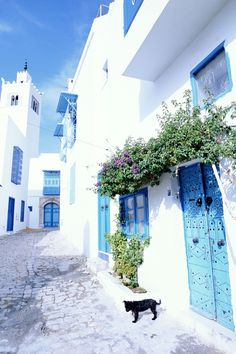 Sidi Bou Said, Tunisia - HouseBeautiful.com