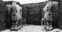 Khorsabad | arriba: Toros alados (lamassu) en antigua foto de una puerta del ...
