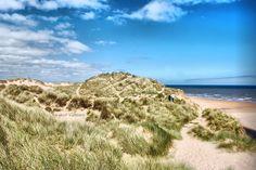 sand dunes, Balmedie Beach, Aberdeenshire