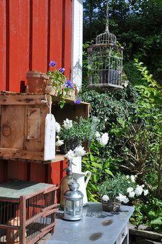 Husmannsplassen i Hidlesundet: Et blomstrende innlegg:)