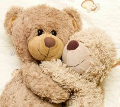 Love bears. Bears hugging