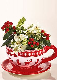 Christmas flowers in a big teacup