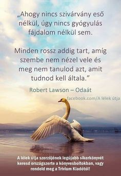 Robert Lawson: Odaát (részlet) Mind Gym, Motivational Quotes, Inspirational Quotes, Affirmation Quotes, Positive Affirmations, Just Do It, Picture Quotes, Einstein, Quotations