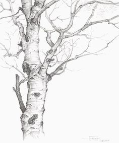Tree Aspens Paintings by Helen - Google'da Ara