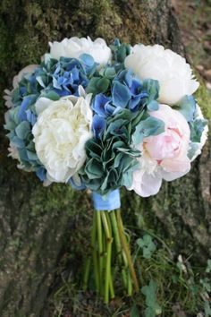 Blue/green antique Dutch Hydrangea with white and pink peonies