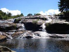 PARANA Parque Nacional dos Campos Gerais - Pesquisa Google