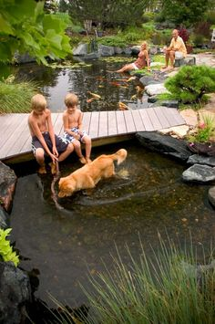 704-816-0526 Charlotte 864-381-7663 Greenville and Asheville Platinum Ponds and Lake Management #pondmanagement Swimming in water garden with dog.  platinumponds.com