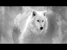 Home Art Wall Decoration Abstract Wolf Oil Painting Picture Printed On Canvas Wallpaper Images Hd, Wolf Wallpaper, Full Hd Wallpaper, Free Hd Wallpapers, Animal Wallpaper, Wallpapers Android, White Wallpaper, Hd Desktop, Wolf Images