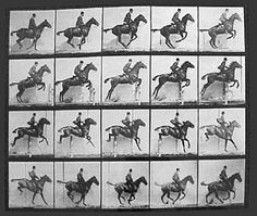 Sample: 1880s, Eadweard Muybridge used multiple cameras to capture motion in stop-action photographs, and his zoopraxiscope, a device for projecting motion pictures that pre-dated the flexible perforated film strip used in cinematography.