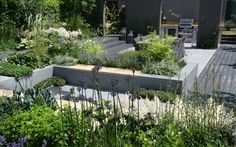 Hampton Court Flower Show 2013: the gardens in pics - Telegraph
