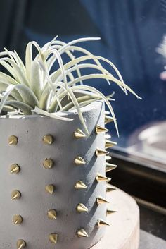 HOW TO MAKE AN UNUSUAL STUDDED PLANTER   Always Brainstorming