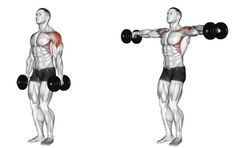 7 Dumbbell Strength Training Exercises for Guys Over 50 – Fitness And Exercises Gym Workout Chart, Gym Workout Tips, Strength Training Workouts, Fun Workouts, Training Exercises, Chest Workout Routine, Best Chest Workout, Chest Workouts, Deltoid Workout