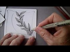 Featherfall Tangle Pattern Lesson #81 - YouTube