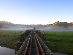 Forgotten World Adventures New Zealand Rail Tours Experience Holiday Day, The Beautiful Country, New Zealand Travel, By Train, Adventure Tours, Train Travel, Day Trips, Scenery, Boat