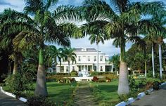The Devon House Mansion is the architectural dream of Jamaica's first black millionaire George Stiebel and one of Jamaica's most celebrated historical landmarks. Stiebel was among three wealthy Jamaicans who constructed elaborate homes during the late 19th century at the corner of Trafalgar Road and Hope Road. Stiebel's legacy lives on with the beautifully maintained Devon House.