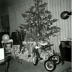 This looks like so many trees we set up in our house for Christmas. It never failed, we'd set it up, my mother wouldn't like something about it, and my father, with a hand saw, would lie down on the floor and start cutting off branches until my mother was satisfied we could start decorating.