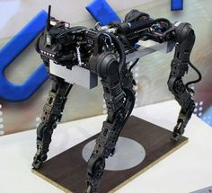 Looks like the South Koreans arent too far behind when it comes to robotics as evident by POSTECHs quadruped robot that might. Robot Concept Art, Armor Concept, Arduino, Learn Robotics, Robot Animal, Boston Dynamics, Mobile Robot, Futuristic Robot, Real Robots