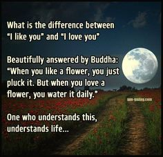 "What is the difference between ""I like you"" and ""I love you"" Beautifully answered by Buddha: ""When you like a flower, you just pluck it. But when you love a flower, you water it daily."" One who understands this, understands life....."
