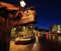 Walt Disney World's Magic Kingdom photo, from ThemeParkInsider.com