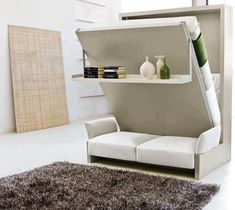 Smart sofa, bed and a Rack.