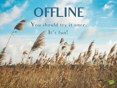 OFFLINE. You should try it once. It's fun.