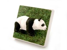 Cute Panda Children's Dimmer Light Switch Handmade by Candy Queen designs