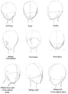 Head perspectives