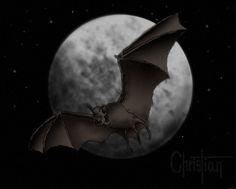 Murciélago y luna llena