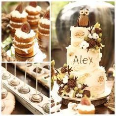 Cute Rustic Owl Themed Birthday Cake