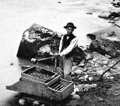 Miner on the Fraser River