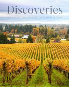 Innovative Winemakers in Oregon Are Shaping the State into the Next Big Destination for Sparkling Wine Sparkling Wine, Travel And Leisure, The Next, Portland Oregon, Vineyard, Innovation, Hotels, Big, Outdoor