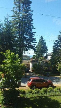 House Sitters Needed Aug 11, 2017 Micro Term Surrey British Columbia Canada