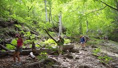 Trekking in National park Paklenica, Croatia #lobagolabnb #lobagolaadventure #mediterra #croatia #outdoor #adventure #balkan #nature #naturalpark #trekking #cycling #freeclimbing #seakayaking #canyoning #lovenature #visitcroatia #plitvicelakes #paklenica #kornatiislands #velebit #citybreak #microadventure