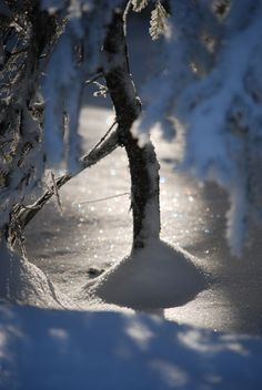 Light Plays With the snow, throwing shadows, throwing sparks, the Cold spell of Winter, the beauty of ice entrancing, capturing the spirit.