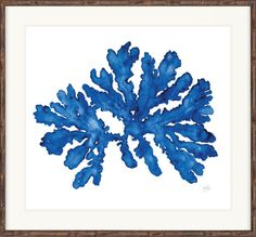 indigo_coral-feather_abstract-designer boys-decoration-design-trade-event-fair-exhibition-artwork-art-The Block-design community-local-maison et objet-AEC
