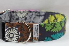 Dog Collar/Custom Dog Collar  - Color me Gray      From FidosFashionCollars