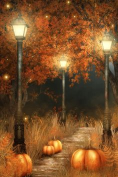 Buy photography backdrops Pumpkin street light tree halloween backdrop fundo fotografico at Wish - Shopping Made Fun Casa Halloween, Halloween Pumpkins, Halloween Backdrop, Samhain Halloween, Halloween Design, Halloween Night, Vintage Halloween, Halloween Pictures, Fall Pictures