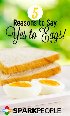 Eggs are Egg-cellent. Eggs every morning for me! | SparkPeople