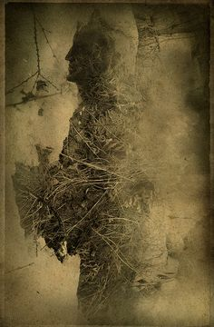 Grassman by Yaroslav Gerzhedovich