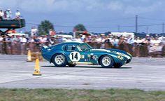 Shelby Daytona Cobra Coupe at Sebring 1965