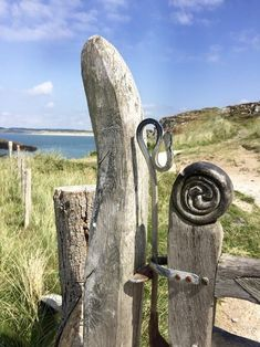 Camping on Anglesey is amazing. Perfect beaches and coves, forests, castles, brilliant birdlife and lots of campsites to choose from. Anglesey, Snowdonia, Grey Skies, Cool Cafe, Snorkelling, Beach Camping, Picnic Area, The Dunes, Nature Reserve