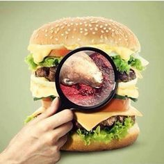 Put that on your adverts MacDonalds or any other evil organisation that exploits and murders innocent animals and packages then into burger patties. This image is very powerful. Please share as much as you can.